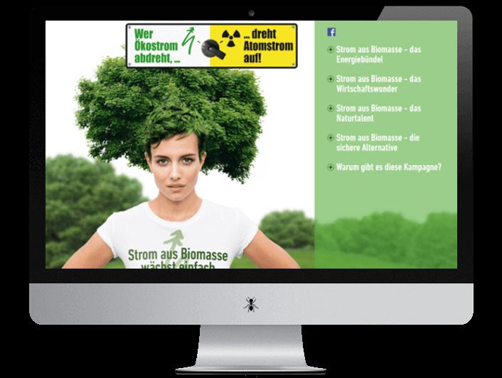 Strom aus Biomasse